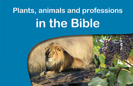 Plants, animals and professions in the Bible